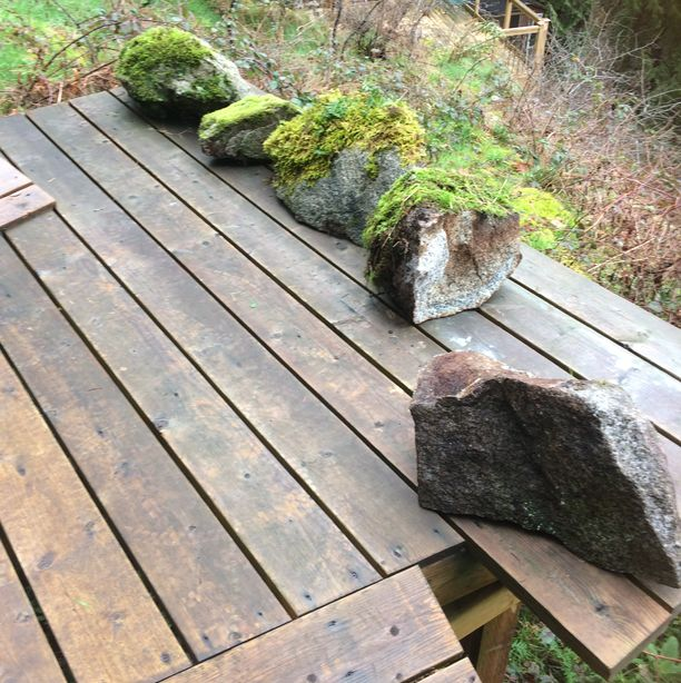 Landscape rocks with moss as sold to a customer in Burnaby