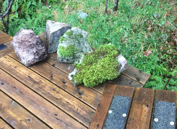 Landscaping rocks with moss in Metro Vancouver and Fraser Valley
