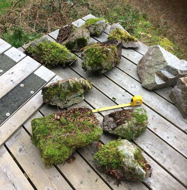 Medium size rocks with moss in Vancouver