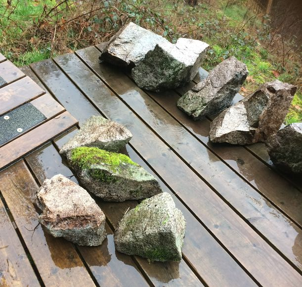 Small garden rocks with moss in Metro Vancouver and Fraser Valley